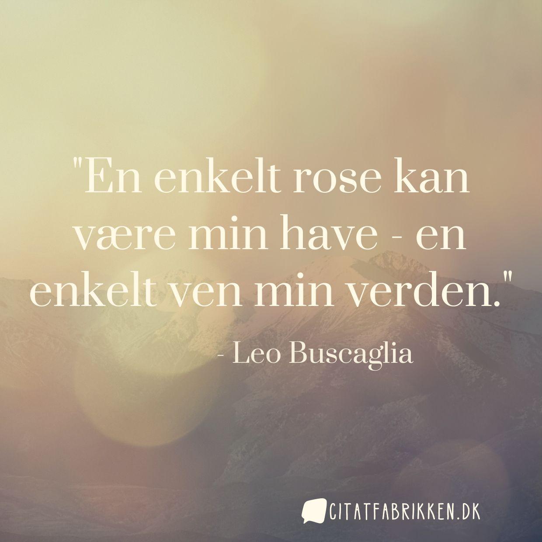 En enkelt rose kan være min have - en enkelt ven min verden.