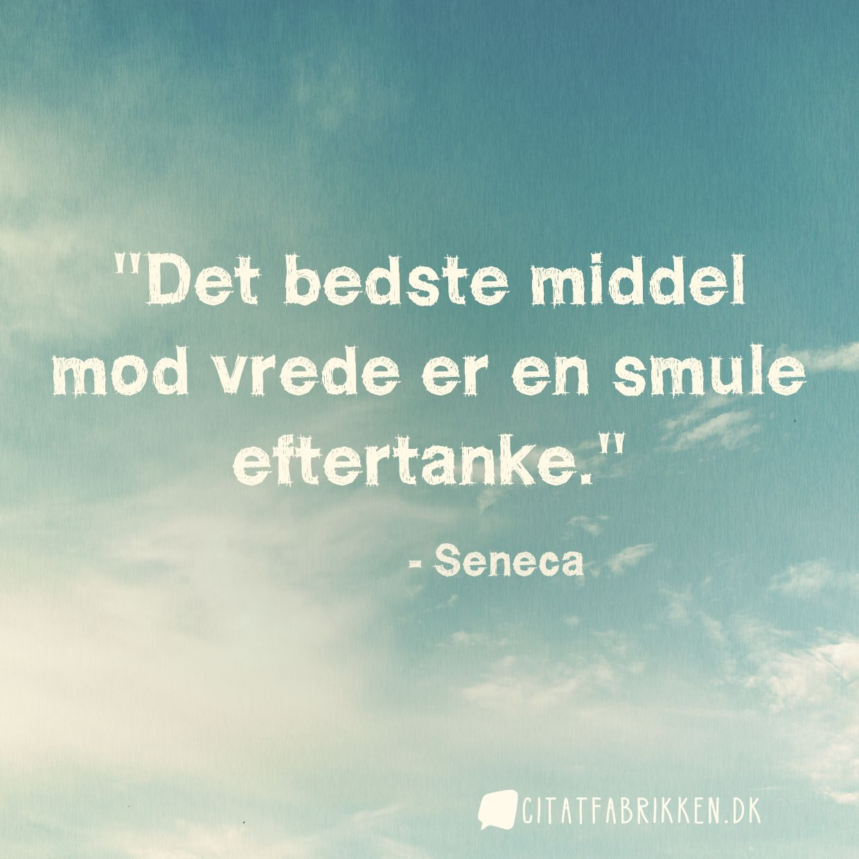 citater om vrede Citat | Seneca citater om vrede