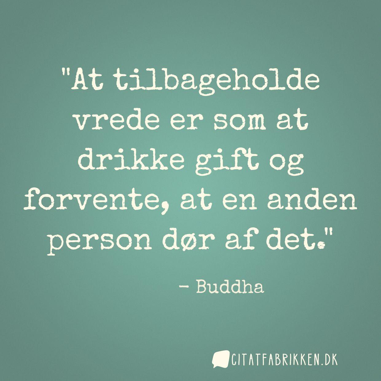 citater om vrede Citat | Buddha citater om vrede