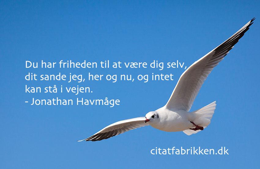 frihed citater Frihed | Citatfabrikken frihed citater